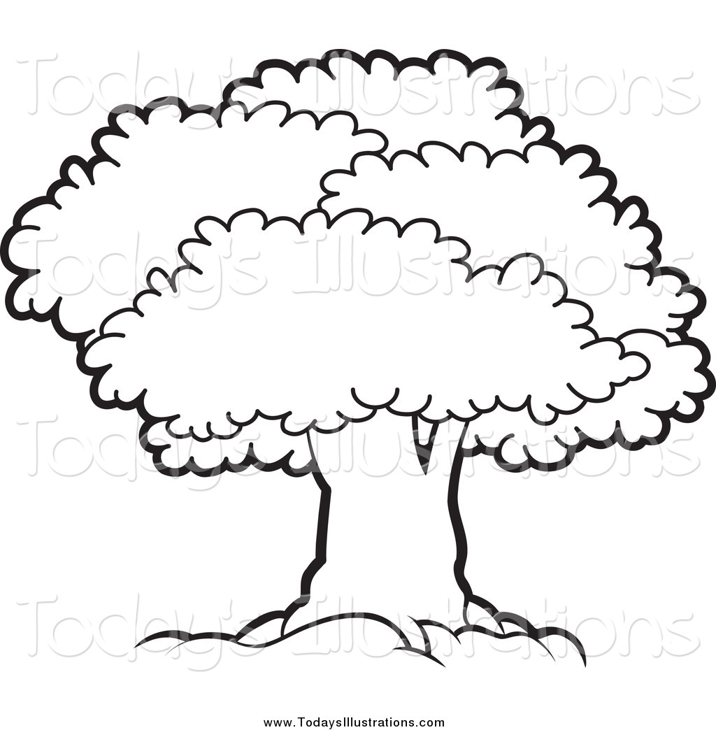 1024x1044 Bushes Clipart Black And White Collection