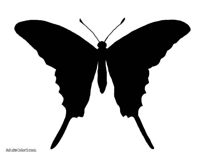 700x542 Butterfly Outline Or Silhouette Basic Butterfly Shapes