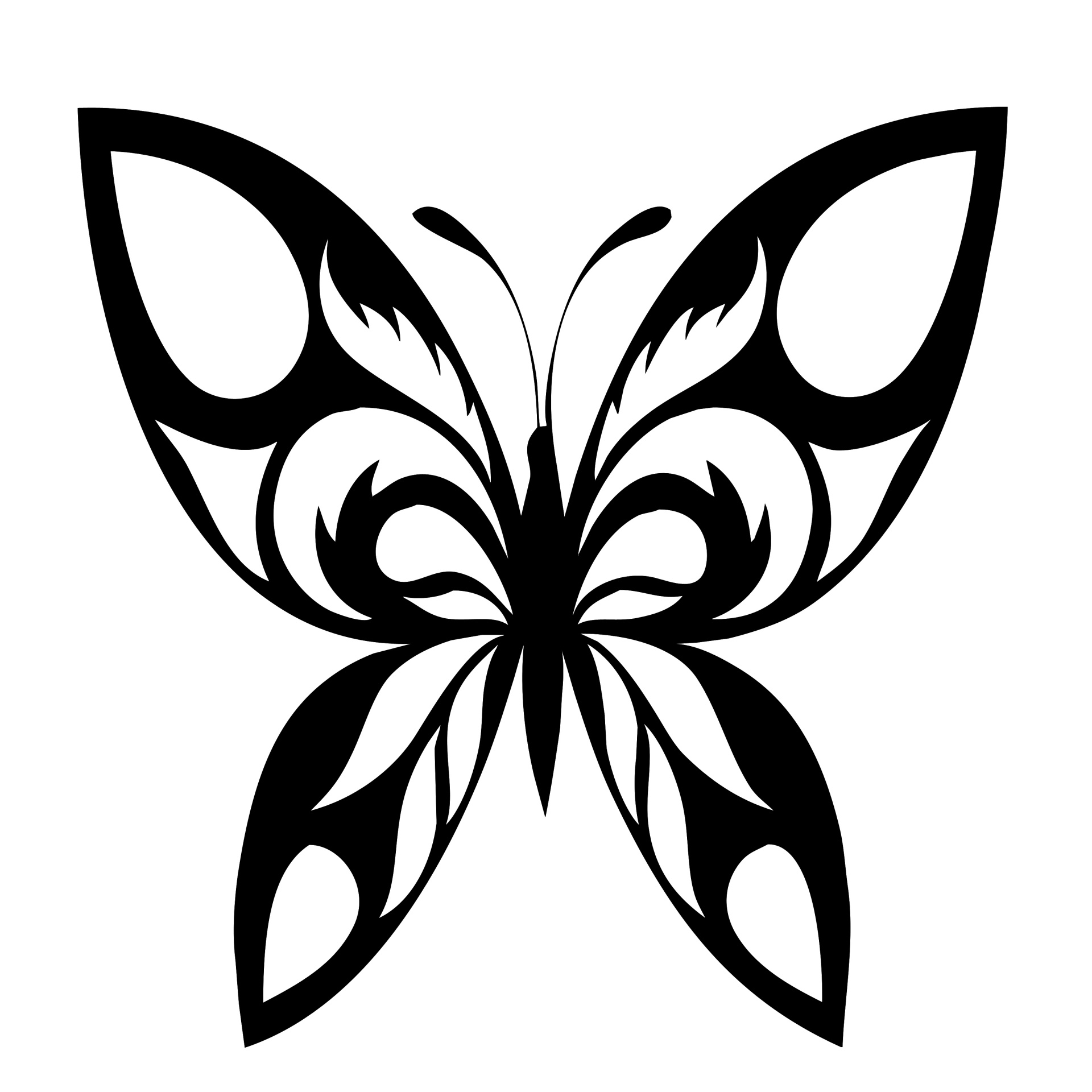 1920x1920 Butterfly Silhouette Black Motif Free Stock Photo