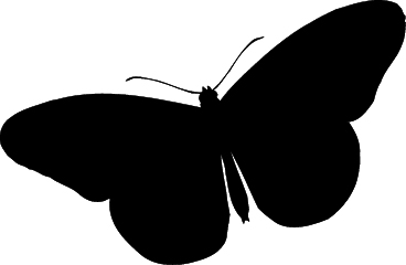 368x240 Butterfly Silhouette Png Clipart Panda