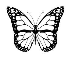 236x187 Free Butterfly Printable Amp How To Use With Silhouette Software