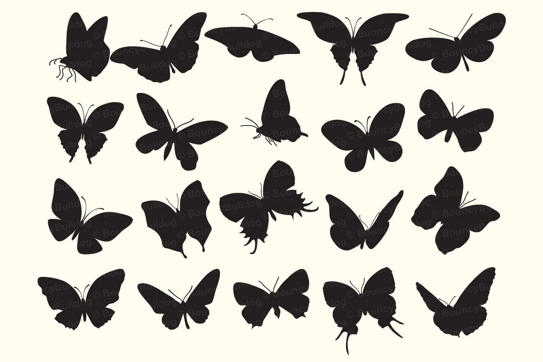1114x744 Butterfly Silhouettes Digital Butterflies Vector Eps Butterfly
