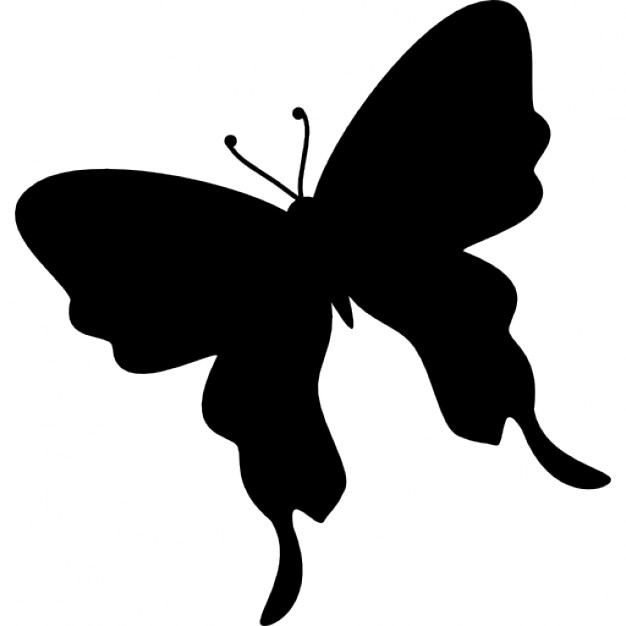 626x626 Butterfly Black Silhouette Shape From Top View Rotated To Left
