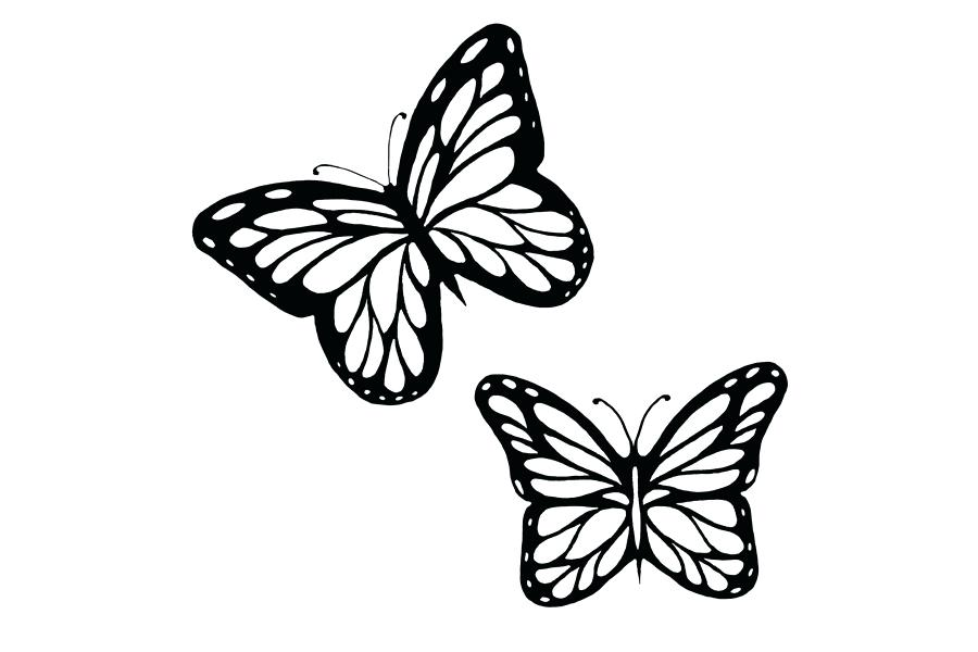 900x600 Free Butterfly Stencil Monarch Butterfly Outline And Silhouette