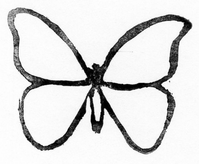 649x536 Butterfly Outline Template Free Coloring Pages
