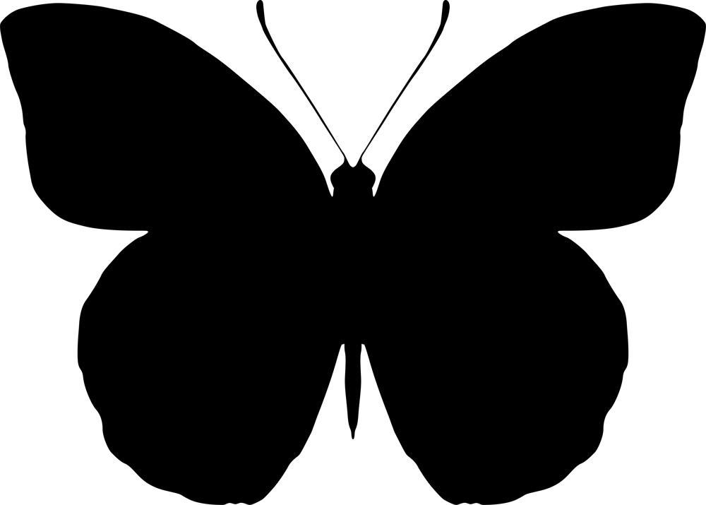 1000x715 Butterfly Silhouette Vector Art Coreldraw Vector (.cdr) File Free