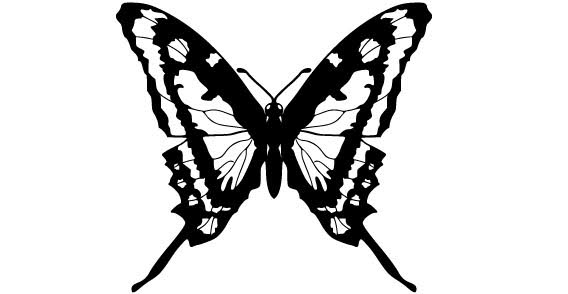 568x294 Free Butterfly Silhouette, Vector Graphics
