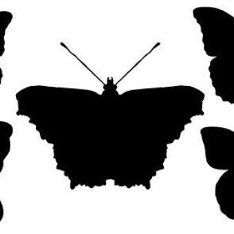 340x340 Free Butterfly Silhouette Vector Pack 123freevectors