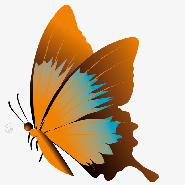 650x650 Vector Butterfly Silhouette, Insect, Shape, Bug Png And Vector