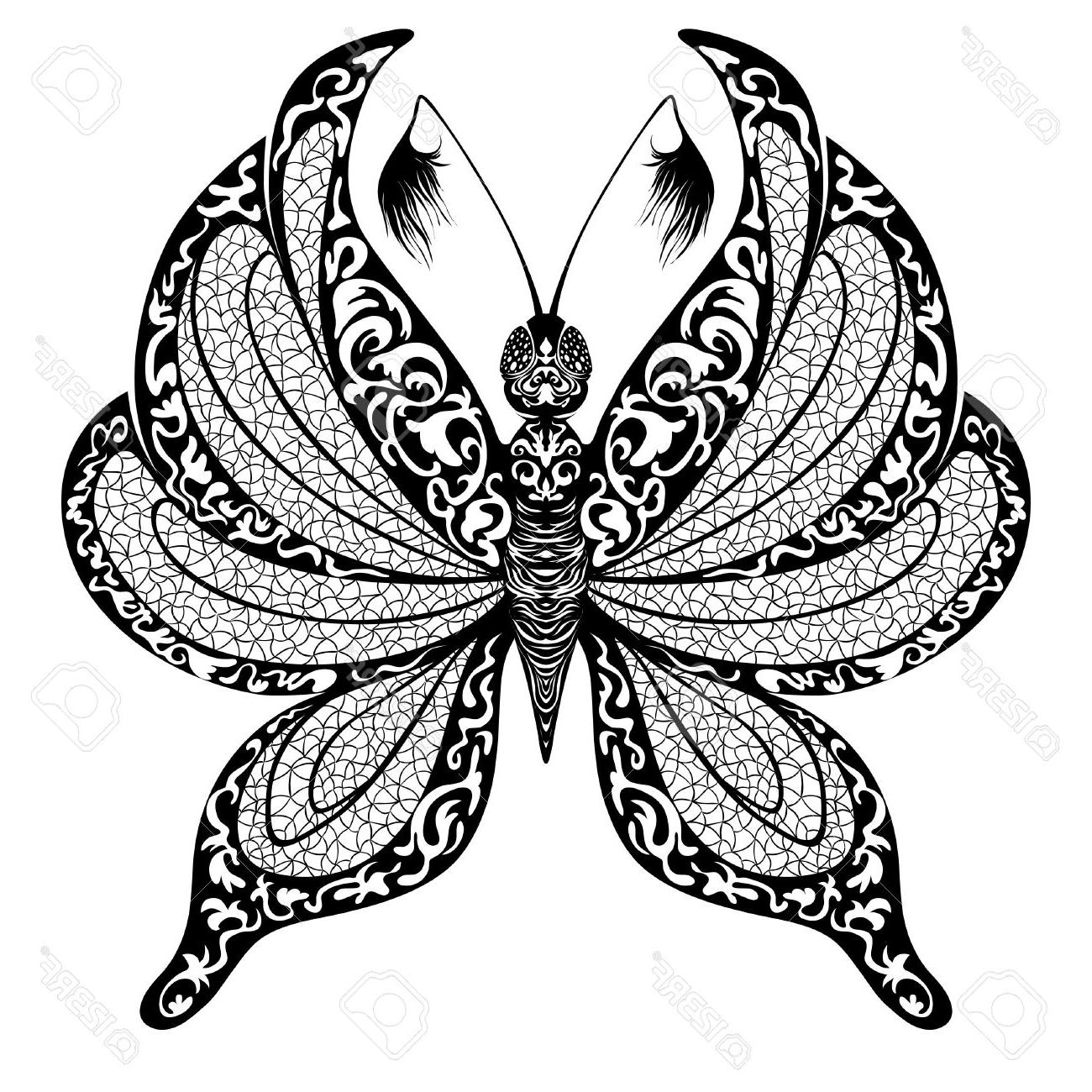 1300x1300 Best 15 Silhouette Of Butterfly On Transparent Background Stock