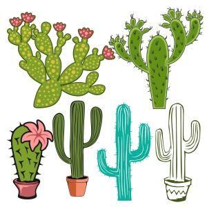 300x300 Flowering Cactus Clipart Silhouette