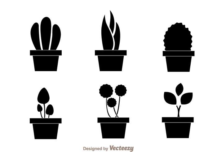 Cactus Silhouette Vector