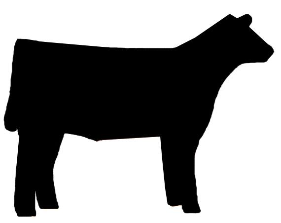 570x452 Club Calf Clipart