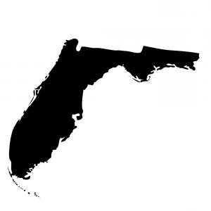 300x300 Florida County Map Vector Outline Gm Lazttweet