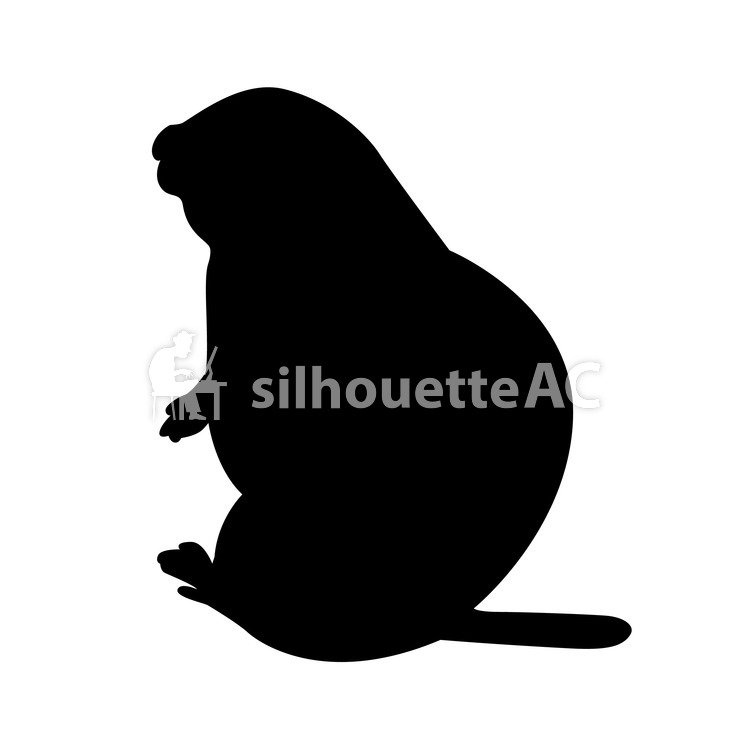 750x750 Free Silhouette Vector An Illustration