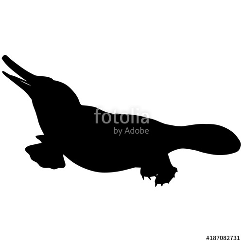 500x500 Platypus Silhouette Vector Graphics Stock Image And Royalty Free