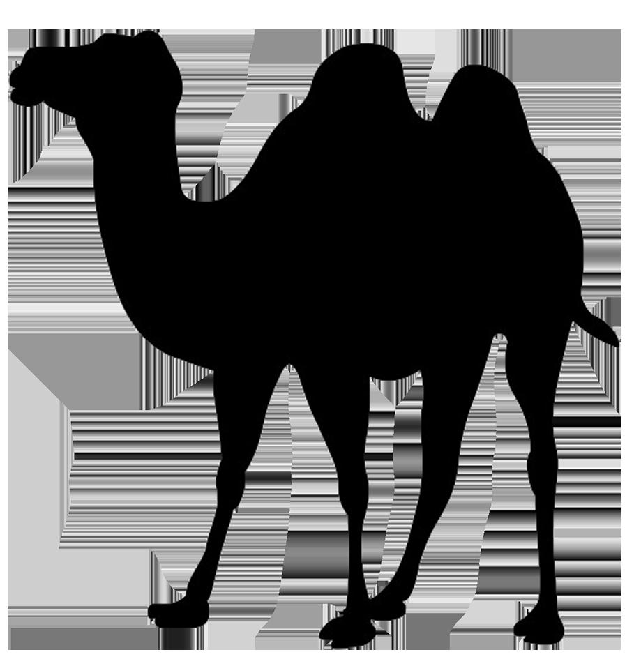919x945 Silhouette Clip Art Of Camel