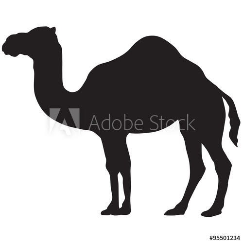 500x500 Camel Silhouette Vector