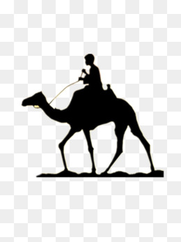 260x347 Camel Silhouette Png Images Vectors And Psd Files Free