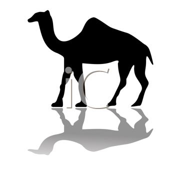 350x350 Picture Of A Silhouette Of A Camel And It's Shadow In A Vector