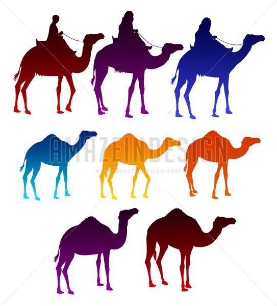 543x600 Of Colorful Vector Camels Silhouette