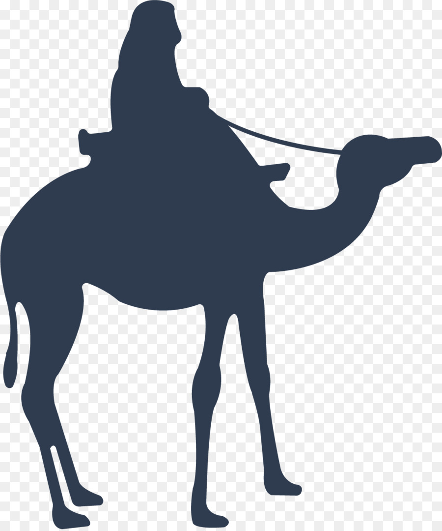 900x1080 Camel Download Icon