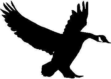 360x259 Goose Silhouette Landing Hunting Decal 5 X 3.5 Ebay