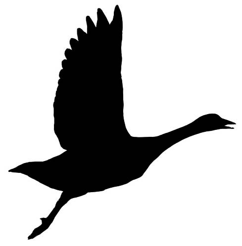 489x498 Goose Silhouette