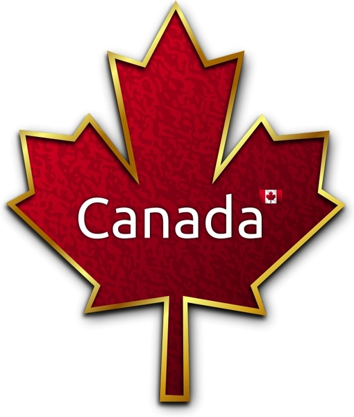 510x600 Maple Leaf 5 Free Vector In Open Office Drawing Svg ( Svg