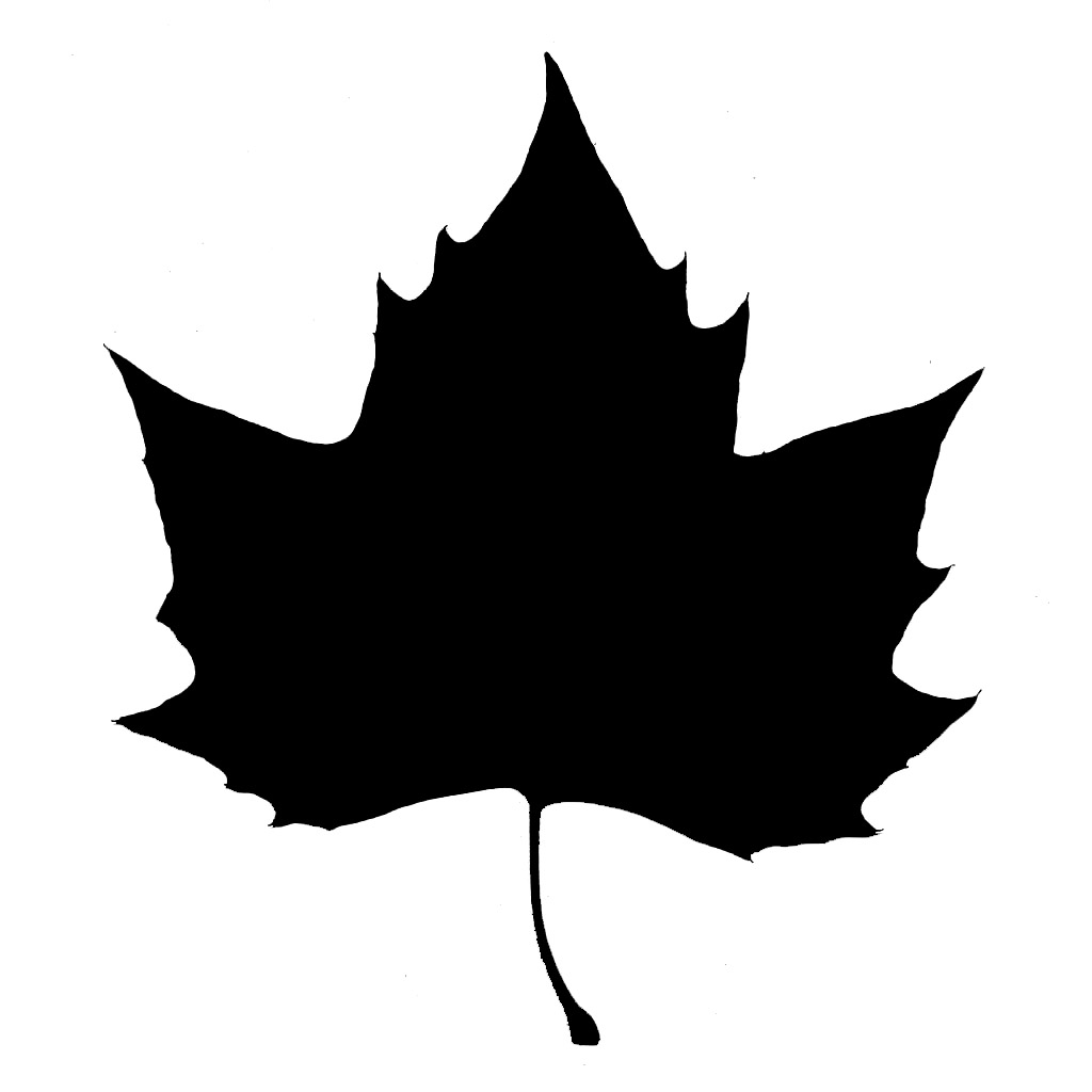 1024x1024 8 Maple Leaf Silhouette Vector Images