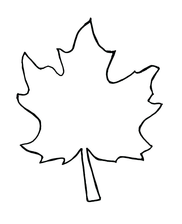 736x907 Maple Leaf Silhouette 2 Free Vector In Open Office Drawing Free