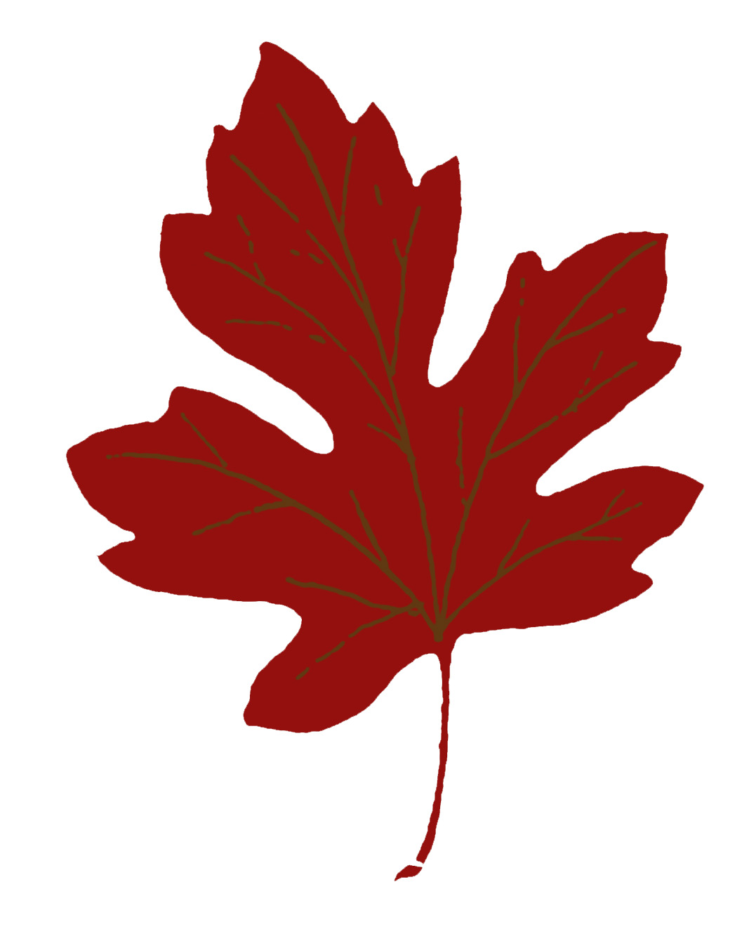 1067x1350 Red Maple Leaf Clipart