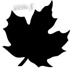 236x229 Maple Leaf (Not For Quilting, But I Might Beble To Use Its