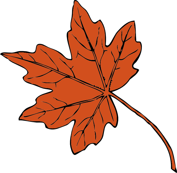 600x585 Canadian Maple Leaf Clip Art