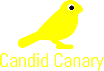 399x274 Candid Canary