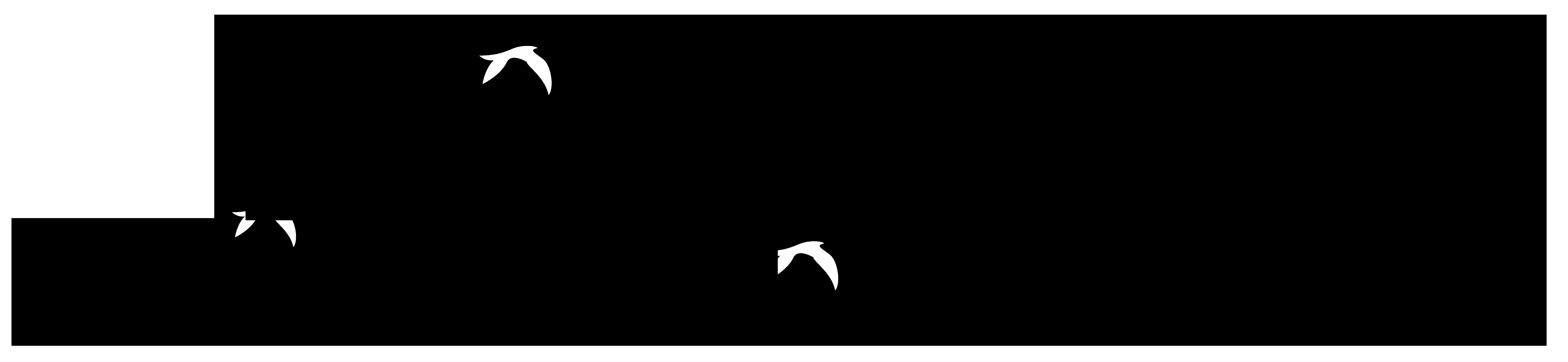 7919x1829 Free Love Bird Silhouette Clip Art
