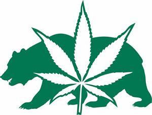 Cannabis Silhouette