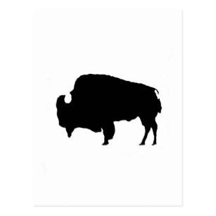 307x307 Buffalo Silhouette Postcards Zazzle