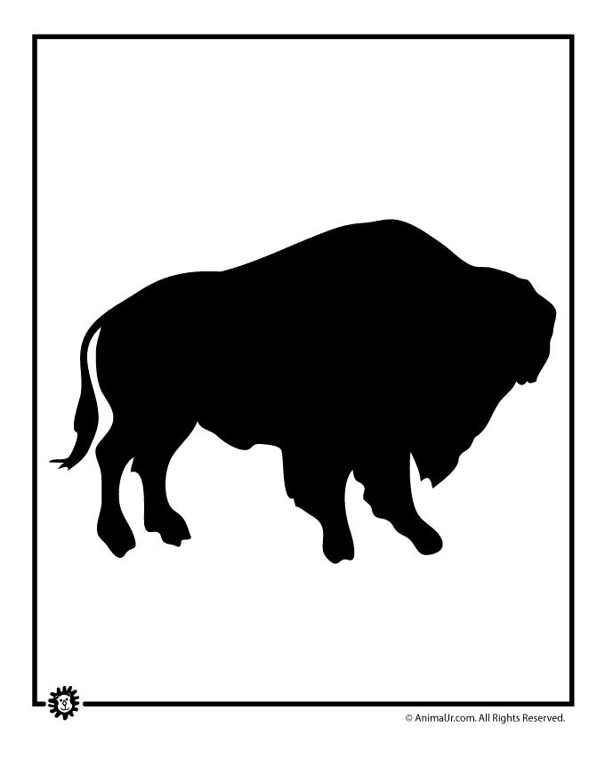 680x880 15 Best Buffalo Images On Bison, Buffalo And A Tattoo