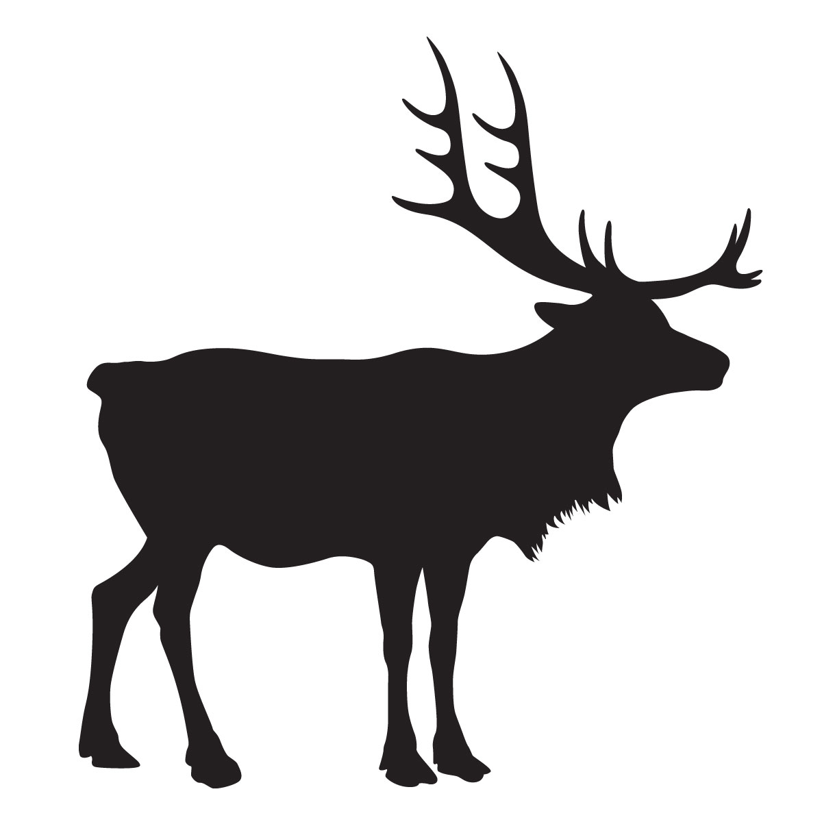 1200x1200 Reindeer Stencil For Glitter Tattoos For Horses