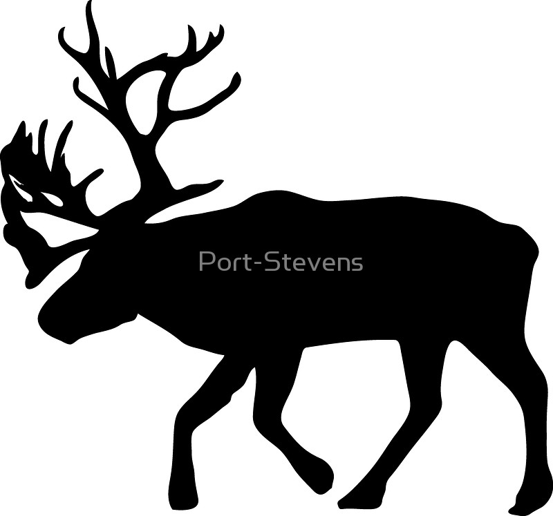 800x747 Caribou Stickers By Port Stevens Redbubble