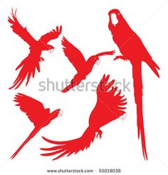 236x246 Silhouette Clipart macaw