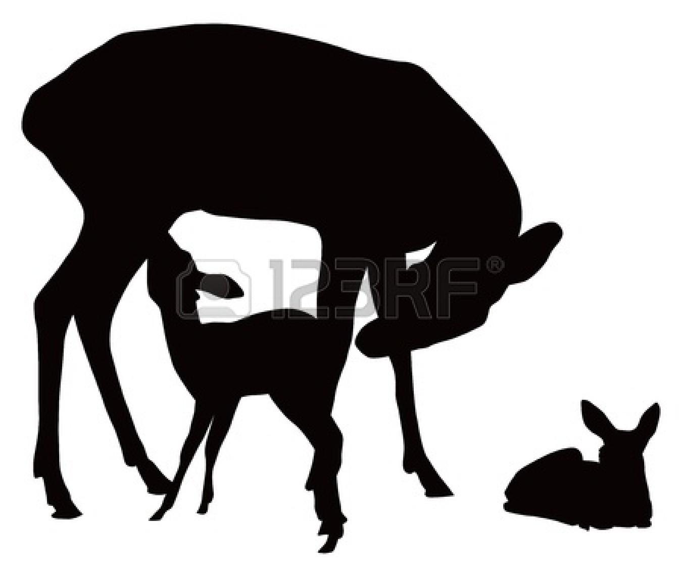 1350x1143 Deer Clipart Fawn