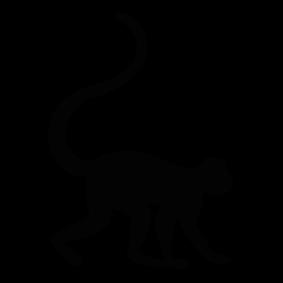 283x283 Monkey Silhouette Silhouette Of Monkey