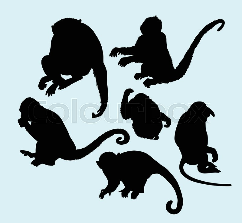 800x738 Ape And Monkey Action Silhouette. Good Use For Logo, Web Icons