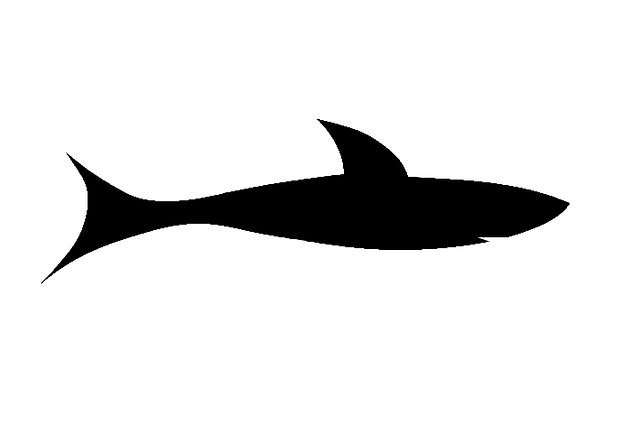 Cartoon Shark Silhouette