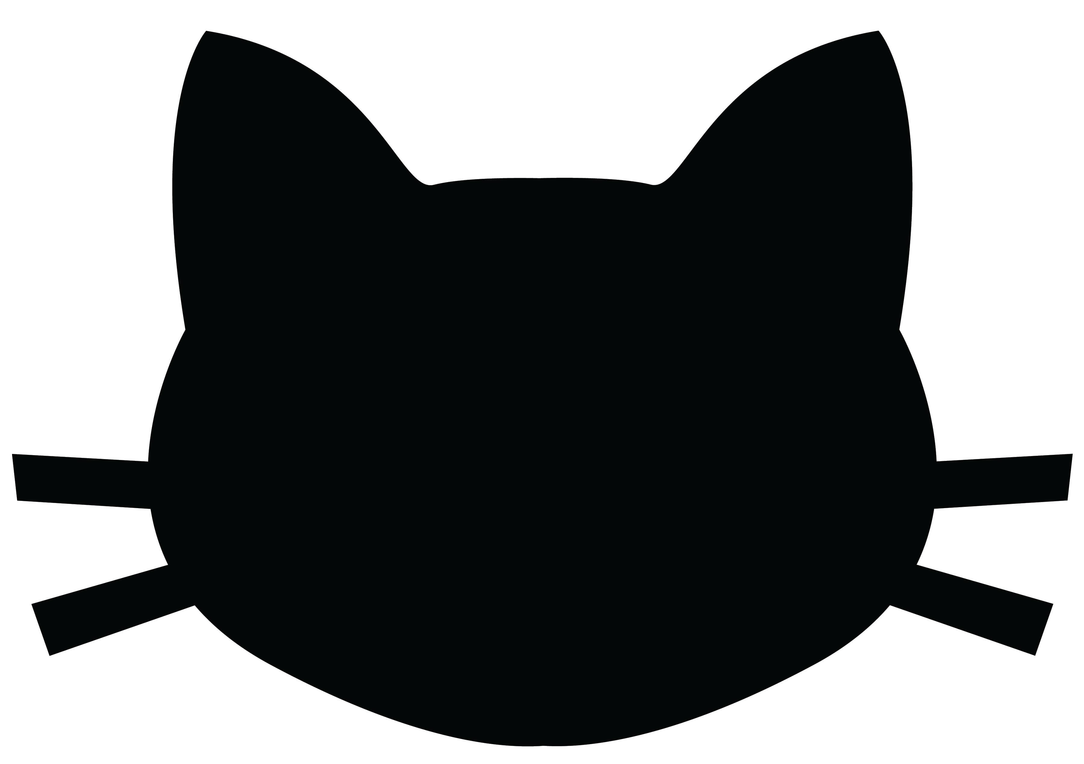 3600x2538 Crazy Cat Lady Shirt Tutorial