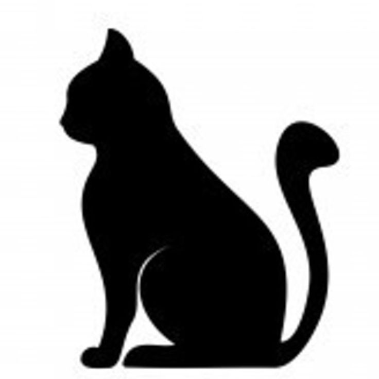 736x736 Clipart Cat Outline Cats Silhouette Free Pictures On Pixabay