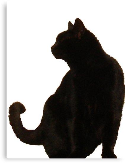 422x550 Black Cat Silhouette Canvas Prints By Taiche Redbubble