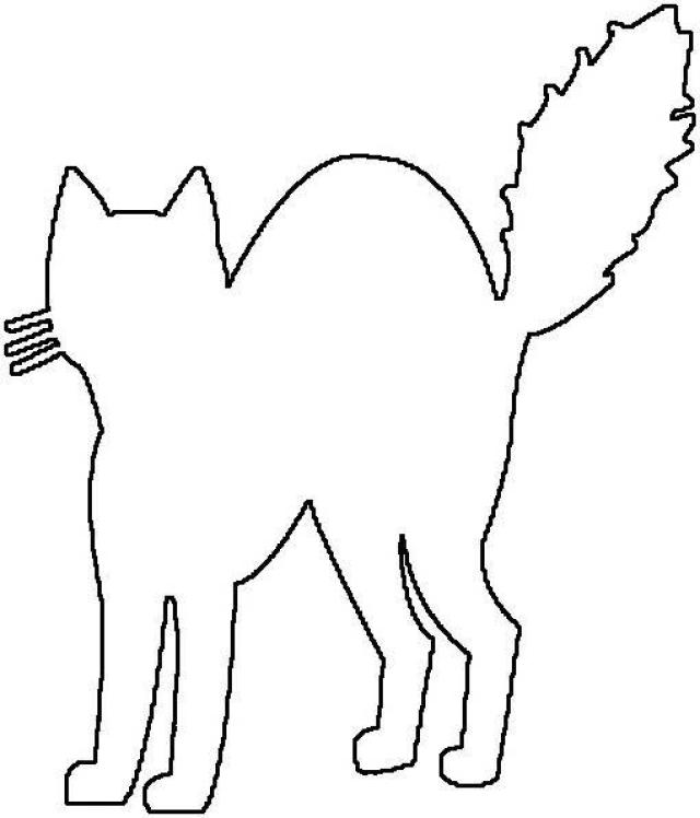 640x748 Cat Silhouette Outline
